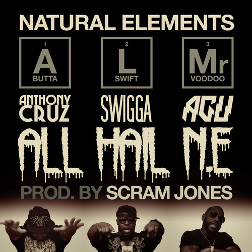 Natural-Elements-All-Hail-NE